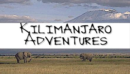 Kilimanjaro Adventures: www.kiliadventures.com